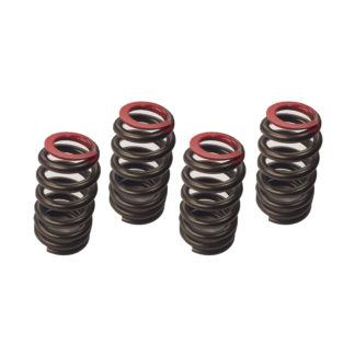 OEM Indian Thunderstroke High-Lift Valve Spring Set